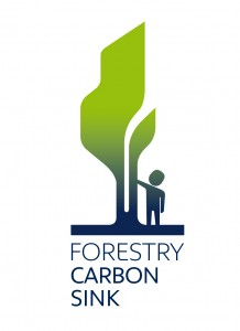 Forestry_Carbon_Sink